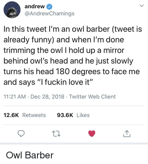"""Barber: andrew  @AndrewChamings  In this tweet I'm an owl barber (tweet is  already funny) and when l'm done  trimming the owl I hold up a mirror  behind owl's head and he just slowly  turns his head 180 degrees to face me  and says """"l fuckin love it""""  11:21 AM Dec 28, 2018 Twitter Web Client  12.6K Retweets 93.6K Likes Owl Barber"""