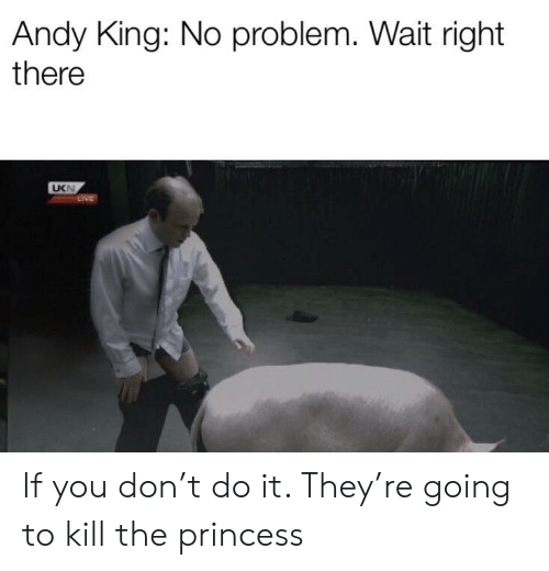 Andy King: Andy King: No problem. Wait right  there  UKN  LIVE If you don't do it. They're going to kill the princess