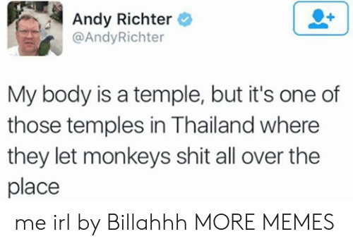 Dank, Memes, and Shit: Andy Richter  @AndyRichter  My body is a temple, but it's one of  those temples in Thailand where  they let monkeys shit all over the  place me irl by Billahhh MORE MEMES