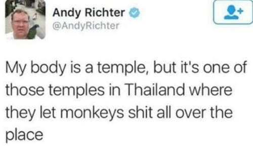 Dank, Shit, and Thailand: Andy Richter  @AndyRichter  My body is a temple, but it's one of  those temples in Thailand where  they let monkeys shit all over the  place