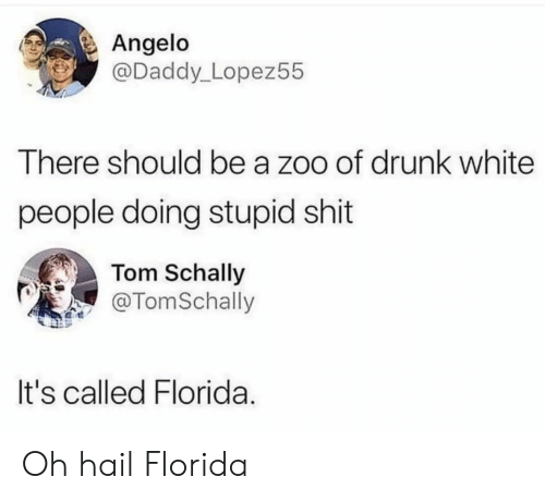 zoo: Angelo  @Daddy_Lopez55  There should be a zoo of drunk white  people doing stupid shit  Tom Schally  @TomSchally  It's called Florida. Oh hail Florida