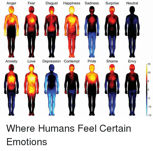 Contemption: Anger  Fear  Disgust  Happiness Sadness  Surprise  Neutra  Anxiety  Love  Depression Contempt  Pride  Shame  Envy  15  10  10  15 Where Humans Feel Certain Emotions