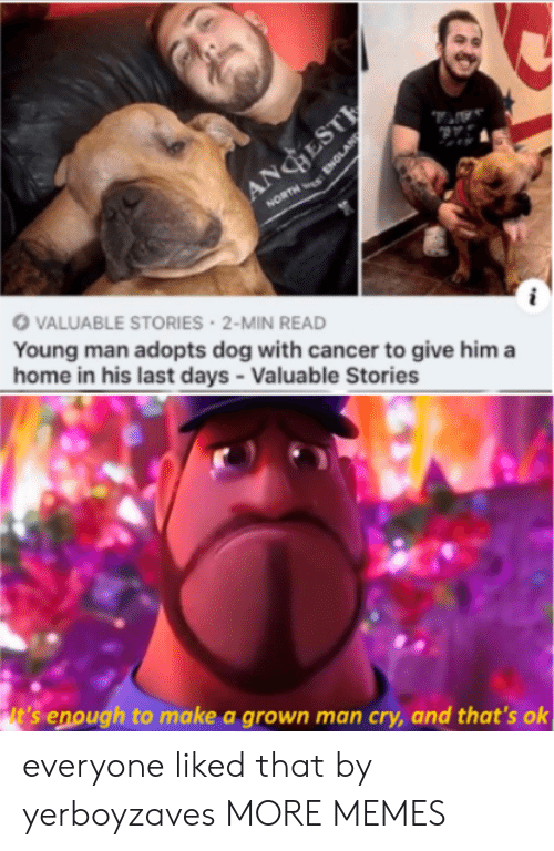 Dank, Memes, and Target: ANGESTE  NORTH ENGLAN  VALUABLE STORIES 2-MIN READ  Young man adopts dog with cancer to give him a  home in his last days - Valuable Stories  it's enough to make a grown man cry, and that's ok everyone liked that by yerboyzaves MORE MEMES