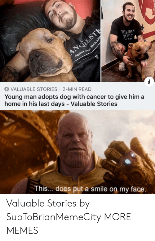 my face: ANGHEST  NORTH ES  VALUABLE STORIES 2-MIN READ  Young man adopts dog with cancer to give him a  home in his last days - Valuable Stories  This... does put a smile on my face.  ENGLAND Valuable Stories by SubToBrianMemeCity MORE MEMES