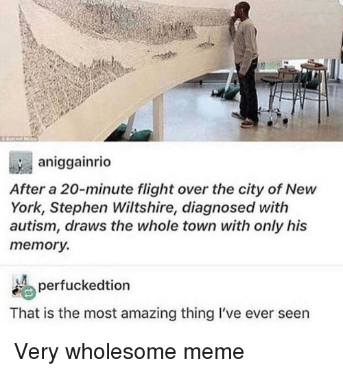 Meme, New York, and Stephen: aniggainrio  After a 20-minute flight over the city of New  York, Stephen Wiltshire, diagnosed with  autism, draws the whole town with only his  memory.  erfuckedtion  That is the most amazing thing I've ever seen Very wholesome meme