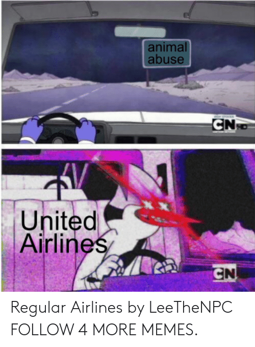 Animal Abuse: animal  abuse  CN  XX  United  Airlines  CN Regular Airlines by LeeTheNPC FOLLOW 4 MORE MEMES.