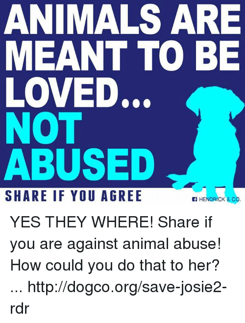 Animal Abuse: ANIMALS ARE  MEANT TO BE  LOVED.  NOT  ABUSED  SHARE IF YOU AGREE  HENDRICK & CO YES THEY WHERE! Share if you are against animal abuse!   How could you do that to her? ...  http://dogco.org/save-josie2-rdr