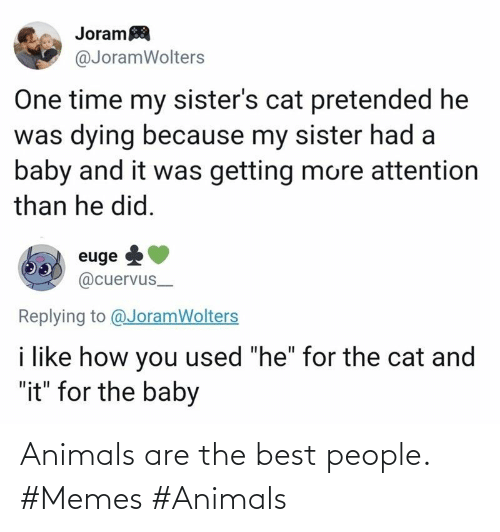 people: Animals are the best people.  #Memes #Animals