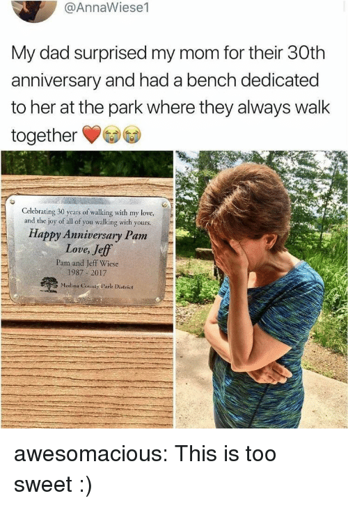 Dad, Love, and Tumblr: @AnnaWiese1  My dad surprised my mom for their 30th  anniversary and had a bench dedicated  to her at the park where they always walk  together  Celebrating 30 years of walking with my love,  and the joy of all of you walking with yours  Happy Anniversary Pam  Love, Jeff  Pam and Jeff Wiese  1987 2017  Medina County Parlk District awesomacious:  This is too sweet :)