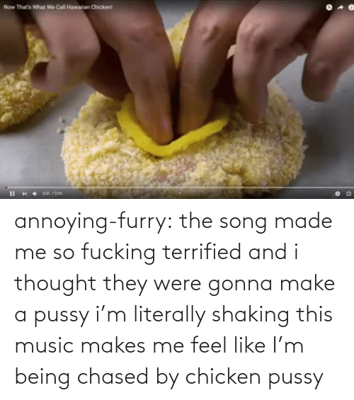 Pussy: annoying-furry: the song made me so fucking terrified and i thought they were gonna make a pussy i'm literally shaking this music makes me feel like I'm being chased by chicken pussy