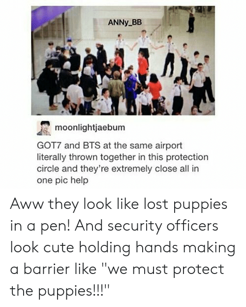 "Aww, Cute, and Puppies: ANNY BB  moonlightjaebum  GOT7 and BTS at the same airport  literally thrown together in this protection  circle and they're extremely close all in  one pic help Aww they look like lost puppies in a pen! And security officers look cute holding hands making a barrier like ""we must protect the puppies!!!"""