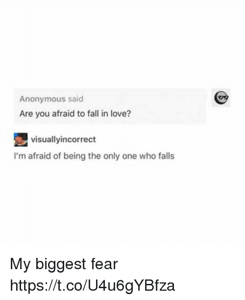 Fall, Love, and Anonymous: Anonymous said  Are you afraid to fall in love?  visuallyincorrect  I'm afraid of being the only one who falls My biggest fear https://t.co/U4u6gYBfza