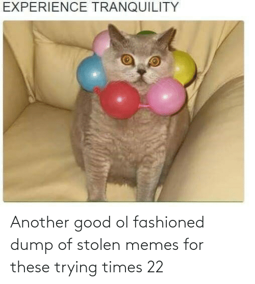 Stolen Memes: Another good ol fashioned dump of stolen memes for these trying times 22