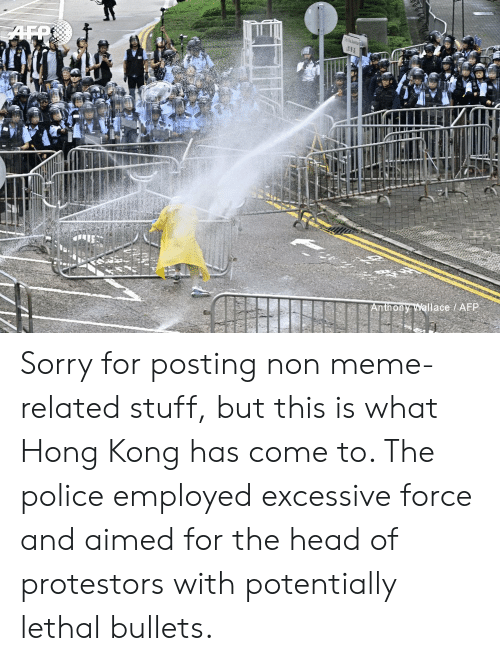 Head, Meme, and Police: Anthony Wallace /AFP Sorry for posting non meme-related stuff, but this is what Hong Kong has come to. The police employed excessive force and aimed for the head of protestors with potentially lethal bullets.