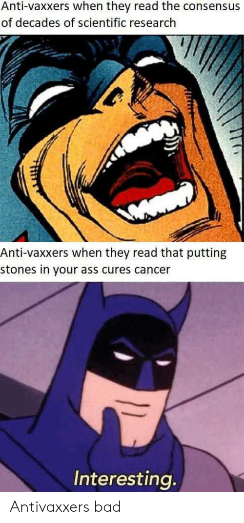 Ass, Bad, and Cancer: Anti-vaxxers when they read the consensus  of decades of scientific research  Anti-vaxxers when they read that putting  stones in your ass cures cancer  Interesting Antivaxxers bad