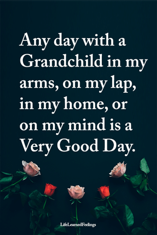any day: Any day with a  Grandchild in my  arms, on my lap,  in my home, or  on my mind is a  Very Good Day.  LifeLearnedFeelings