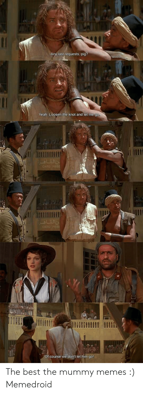 The Mummy Meme: Any last requests, pig?  Yeah, Loosen the knot and let me go  n h  f course we don't let him go The best the mummy memes :) Memedroid