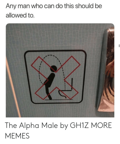 alpha: Any man who can do this should be  allowed to. The Alpha Male by GH1Z MORE MEMES