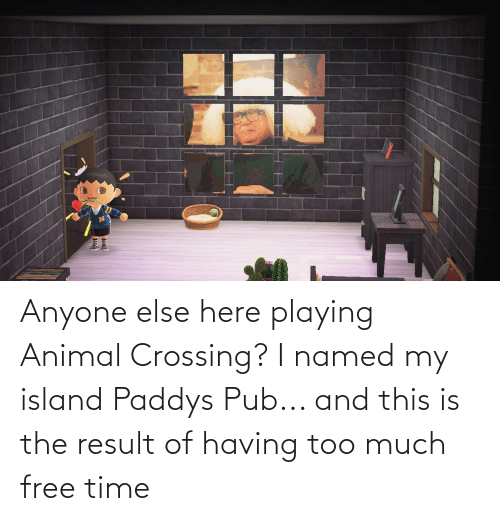 Pub: Anyone else here playing Animal Crossing? I named my island Paddys Pub... and this is the result of having too much free time