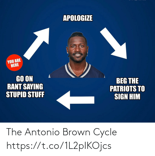 Antonio Brown: APOLOGIZE  YOU ARE  HERE  GO ON  RANT SAYING  STUPID STUFF  BEG THE  PATRIOTS TO  SIGN HIM The Antonio Brown Cycle https://t.co/1L2pIKOjcs