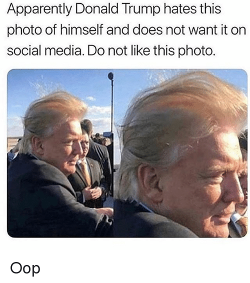 Apparently, Donald Trump, and Memes: Apparently Donald Trump hates this  photo of himself and does not want it on  social media. Do not like this photo. Oop