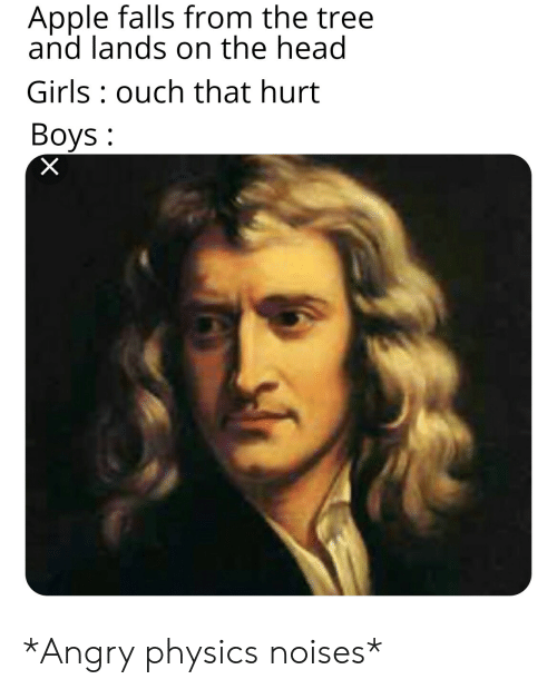 Apple, Girls, and Head: Apple falls from the tree  and lands on the head  Girls ouch that hurt  Boys:  X *Angry physics noises*