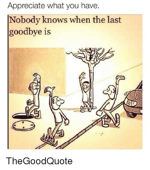 Nobody Know: Appreciate what you have  Nobody knows when the last  goodbye is TheGoodQuote