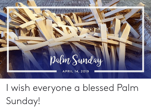 palm: APRIL 14, 2019 I wish everyone a blessed Palm Sunday!