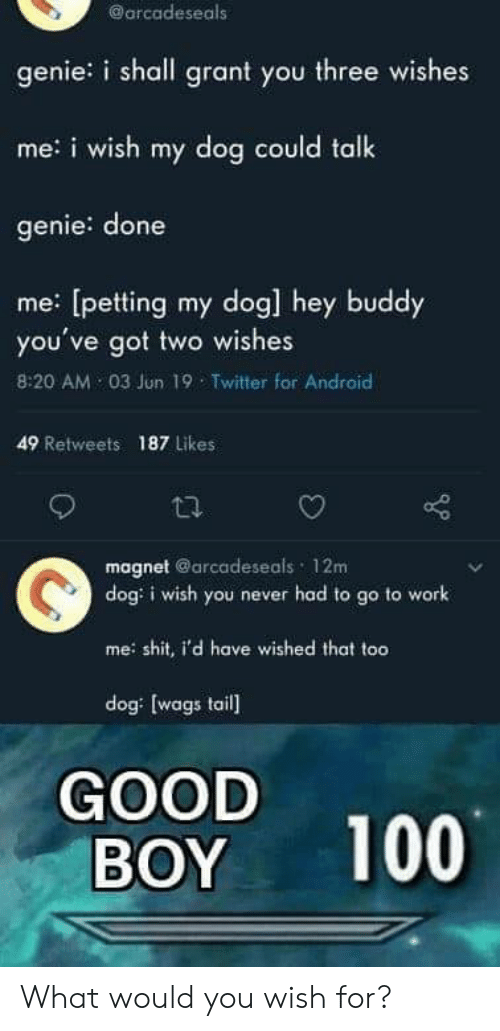 Android, Twitter, and Work: @arcadeseals  genie: i shall grant you three wishes  me:i wish my dog could talk  genie: done  me: [petting my dog] hey buddy  you've got two wishes  8:20 AM 03 Jun 19 Twitter for Android  49 Retweets 187 Likes  magnet @arcadeseals 12m  dog: i wish you never had to go to work  meshit, i'd have wished that too  dog: [wags tail  GOOD  BOY  100 What would you wish for?