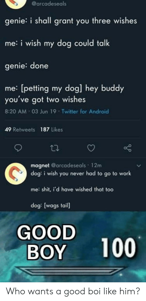 Android, Shit, and Twitter: @arcadeseals  genie: i shall grant you three wishes  me:i wish my dog could talk  genie: done  me: [petting my dog] hey buddy  you've got two wishes  8:20 AM 03 Jun 19 Twitter for Android  49 Retweets  187 Likes  magnet @arcadeseals 12m  dog: i wish you never had to go to work  me shit, i'd have wished that too  dog: [wags tail  GOOD  BOY  100 Who wants a good boi like him?