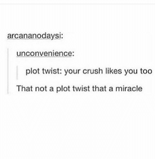 Crush, Humans of Tumblr, and Twisted: arcananodaysi:  unconvenience:  plot twist: your crush likes you too  That not a plot twist that a miracle