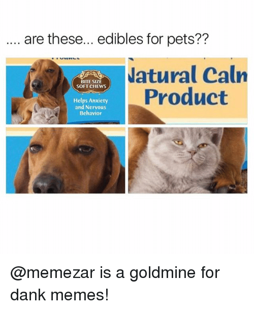 danke: are these... edibles for pets??  atural Caln  Product  BITE SIZE  SOFT CHEWS  Helps Anxiety  and Nervous  Behavior @memezar is a goldmine for dank memes!