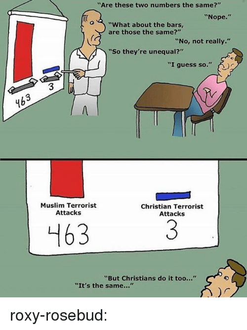 """roxy: """"Are these two numbers the same?""""  """"Nope.""""  o""""What about the bars,  are those the same?""""  """"No, not really.""""  """"So they're unequal?'  """"I guess so.""""  3  4b  Muslim Terrorist  Attacks  Christian Terrorist  Attacks  463  """"But Christians do it too...""""  """"It's the same..."""" roxy-rosebud:"""