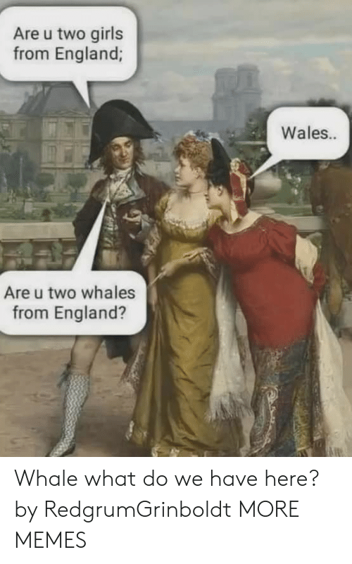 wales: Are u two girls  from England;  Wales..  Are u two whales  from England? Whale what do we have here? by RedgrumGrinboldt MORE MEMES