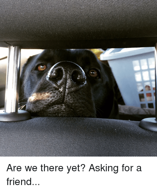 Asking, Friend, and For
