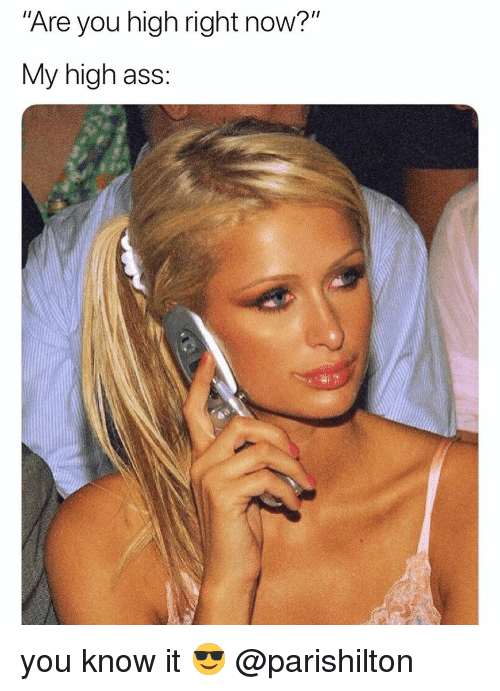 """parishilton: Are you high right now?""""  My high ass: you know it 😎 @parishilton"""