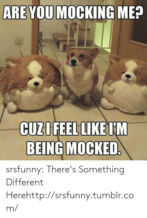 Are You Mocking Me: ARE YOU MOCKING ME?  CUZI FEEL LIKE I'M  BEING MOCKED. srsfunny:  There's Something Different Herehttp://srsfunny.tumblr.com/