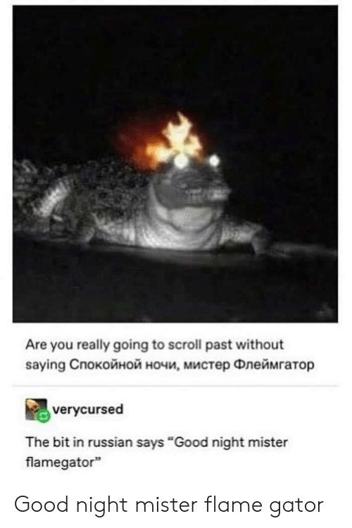 """flame: Are you really going to scroll past without  saying Cпокойной ночи, мистер Флеймгатор  verycursed  The bit in russian says """"Good night mister  flamegator Good night mister flame gator"""