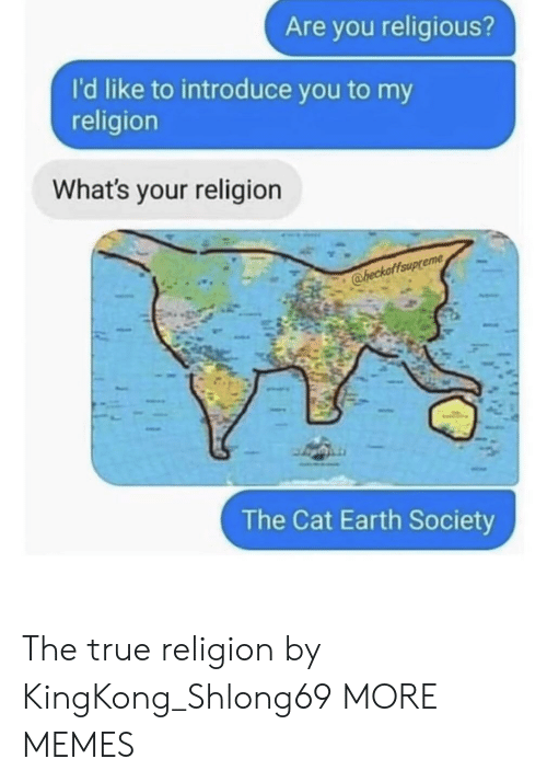 My Religion: Are you religious?  I'd like to introduce you to my  religion  What's your religion  @heckaffaup  The Cat Earth Society The true religion by KingKong_Shlong69 MORE MEMES