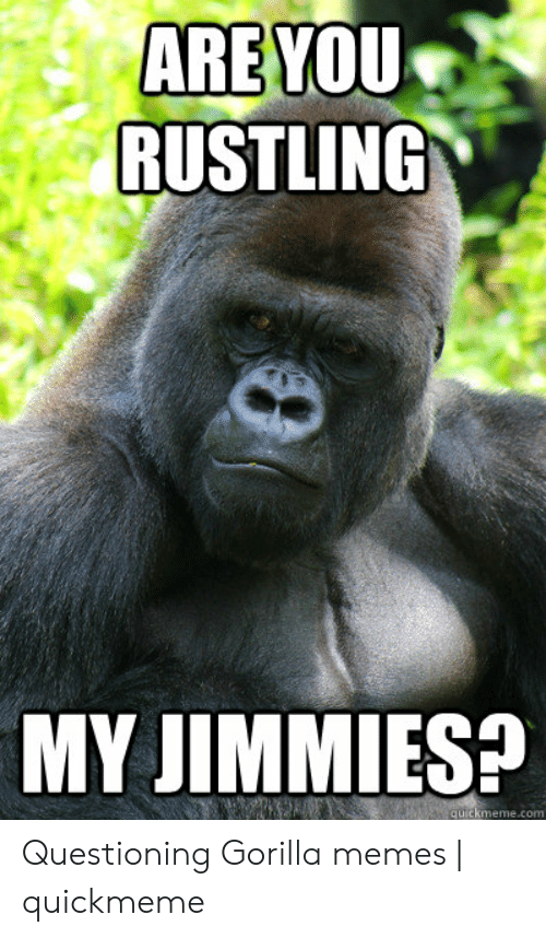 Gorilla Memes: ARE YOU  RUSTLING  MY JIMMIESP  quickmeme.com Questioning Gorilla memes | quickmeme