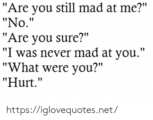 "Still Mad: ""Are you still mad at me?""  ""No.""  ""Are you sure?""  ""I was never mad at you.""  ""What were you?""  ""Hurt."" https://iglovequotes.net/"