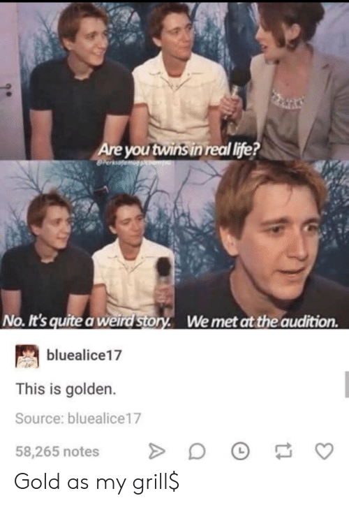 Life, Weird, and Twins: Are you twins in real life?  No. It's quite a weird Story. Wemet at the audition  bluealice17  This is golden.  Source: bluealice17  58,265 notes Gold as my grill$