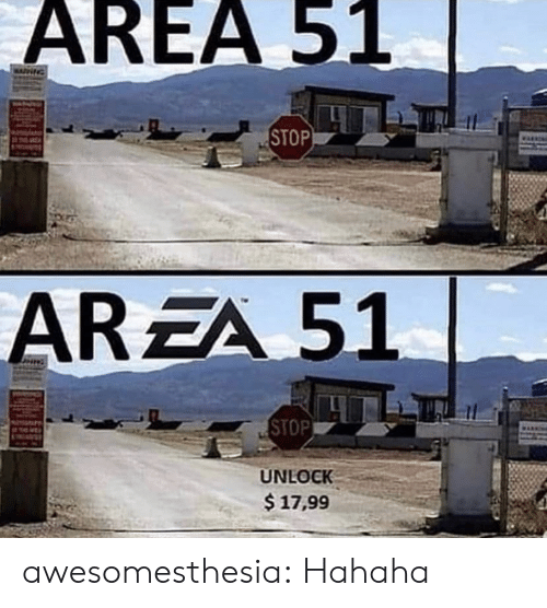 Tumblr, Blog, and Area 51: AREA 51  NG  STOP  AREA 51  STOP  UNLOCK  $17,99 awesomesthesia:  Hahaha