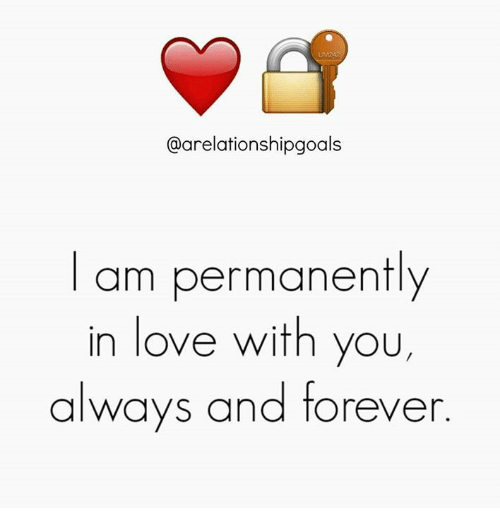 Love, Memes, and Forever: @arelationshipgoals  am permanently  in love with you,  always and forever
