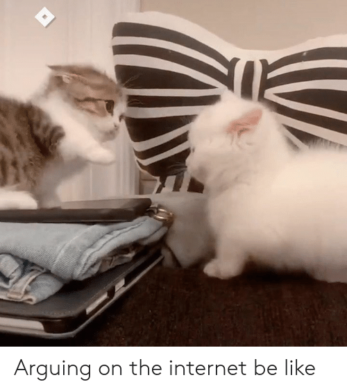 Be Like, Dank, and Internet: Arguing on the internet be like