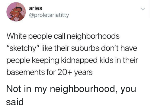 "White People, Aries, and Kids: aries  @proletariatitty  White people call neighborhoods  ""sketchy"" like their suburbs don't have  people keeping kidnapped kids in their  basements for 20+ years Not in my neighbourhood, you said"
