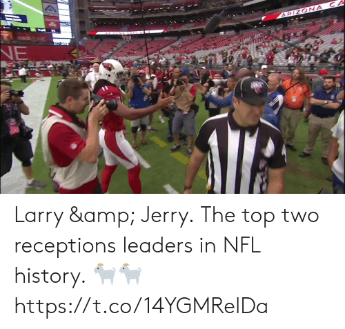 Memes, Nfl, and Arizona: ARIZONA CA  NE Larry & Jerry.  The top two receptions leaders in NFL history. ?? https://t.co/14YGMRelDa