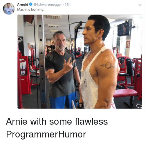 Arnold Schwarzenegger: Arnold @Schwarzenegger 18h  Machine learning. Arnie with some flawless ProgrammerHumor