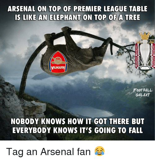 Nobody Know: ARSENAL ON TOP OF PREMIER LEAGUE TABLE  IS LIKE AN ELEPHANT ON TOP OF A TREE  FOOTBALL  GALAXY  NOBODY KNOWS HOW IT GOT THERE BUT  EVERYBODY KNOWS IT'S GOING TO FALL Tag an Arsenal fan 😂