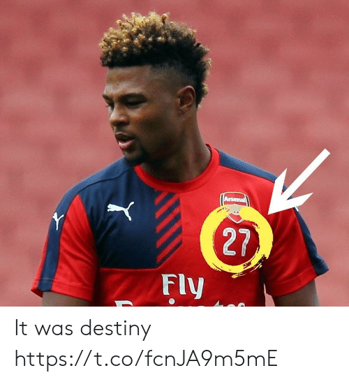 Arsenal, Destiny, and Memes: Arsenal  Y  27  Fly It was destiny https://t.co/fcnJA9m5mE